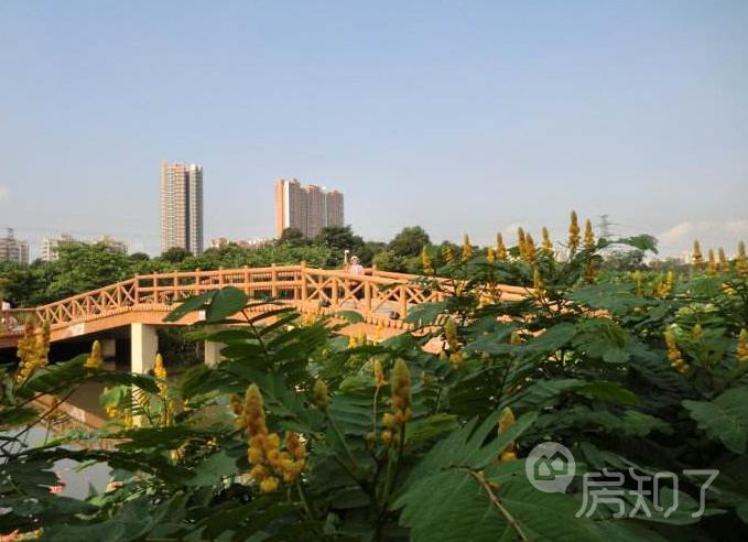 珠江国际公馆